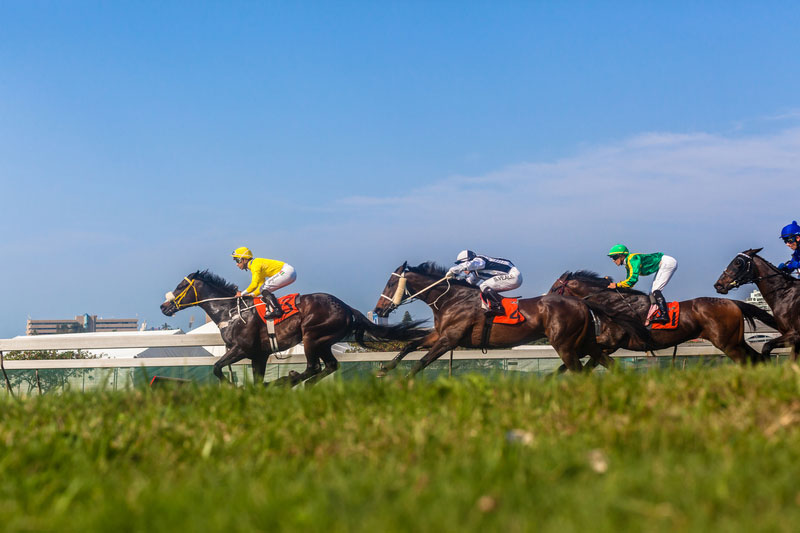 South Africa Horse Racing