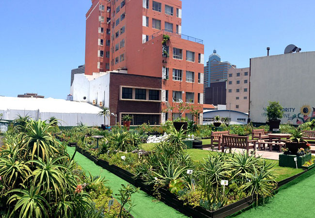 Durban\'s Rooftop Garden