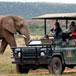 Amakhala Game Reserve, Eastern Cape
