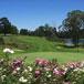 George Golf Club, Garden Route