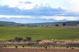 Klein Karoo, Western Cape