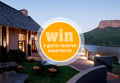 Win a getaway for 2 at Entabeni Safari Conservancy