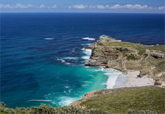 Private Cape Peninsula Tour (Half Day)
