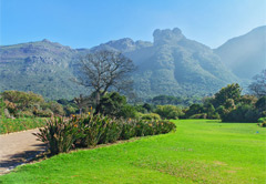 Private City, Kirstenbosch and Constantia Wine