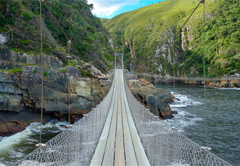 4 Day Garden Route Tour