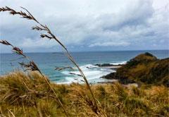 5-Day The Incredible Wild Coast (Self Drive)