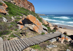8 Day Luxury Honeymoon Garden Route Tour UMZHGR8