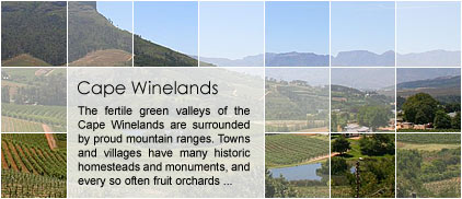Cape Winelands Accommodation by Map