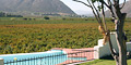DuVon Guesthouse, Breede River Valley