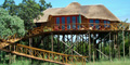 Pezulu Tree House Lodge, Hoedspruit