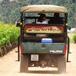 Elgin Wine Bus, Cape Town