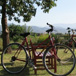 Explore Robertson by Bike, Cape Town