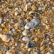 Glengarriff Beach, Eastern Cape