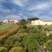 Ormonde Private Cellar, Cape Town