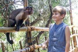 Bushbabies Monkey Sanctuary