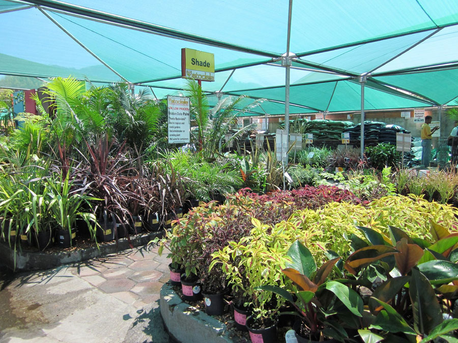 Stodels Garden Centre In Constantia