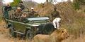 Bushcat Safaris