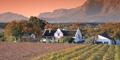 Winelands Tour (SC6) by Springbok Atlas Tours & Safaris
