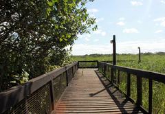 Estuary Walkway