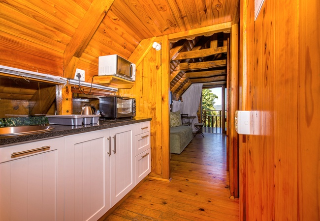 Individual Double Log Cabin - Shower