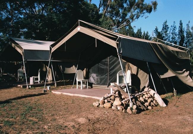 Rest Camp Tent
