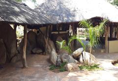 African Extreme Safari