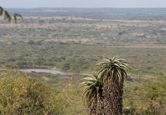 Aloe View Rock Lodge Views