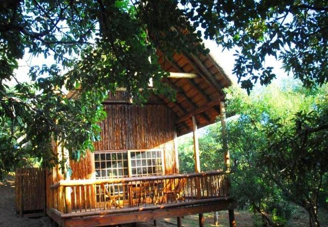 Pauci Cabin