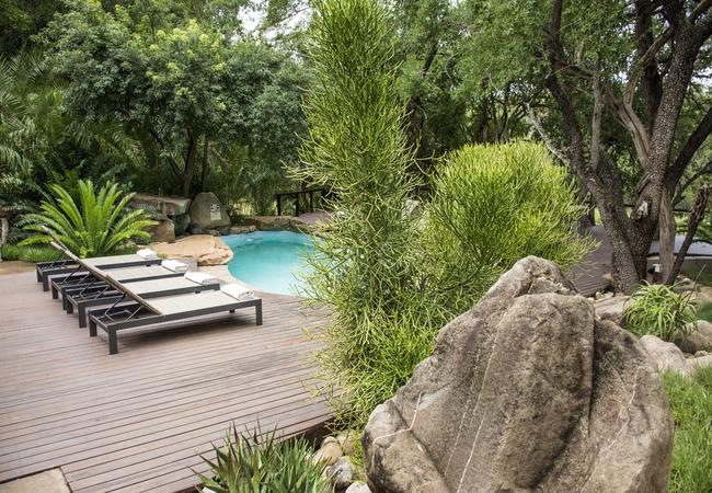 The Pool at AmaKhosi Safari Lodge