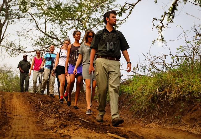 A guided game walk at AmaKhosi Safari Lodge