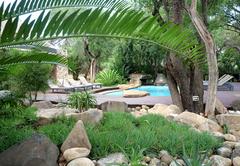 At AmaKhosi Safari Lodge