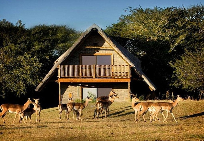 Amorello Africa Chalets