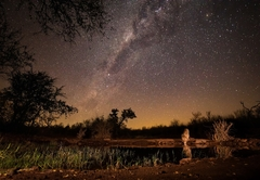 Antares Bush Camp & Safaris