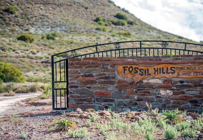 Fossil Hills