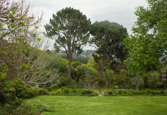 Garden View at Bellevue Studio