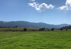 Belvidere Country Estate