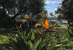 Belvidere Manor reception