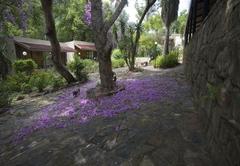 Bergwaters Eco Lodge & Spa