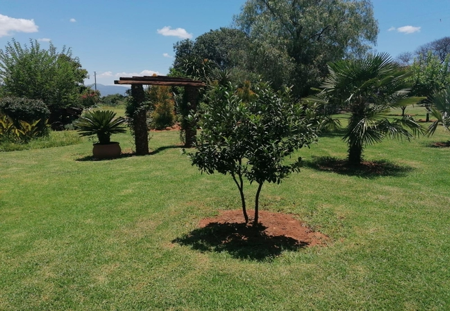Private braai area for Double Room on Ground Floor