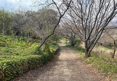 Black Horse Estate