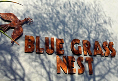 Blue Grass Nest