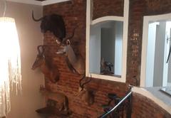 Buffels Place