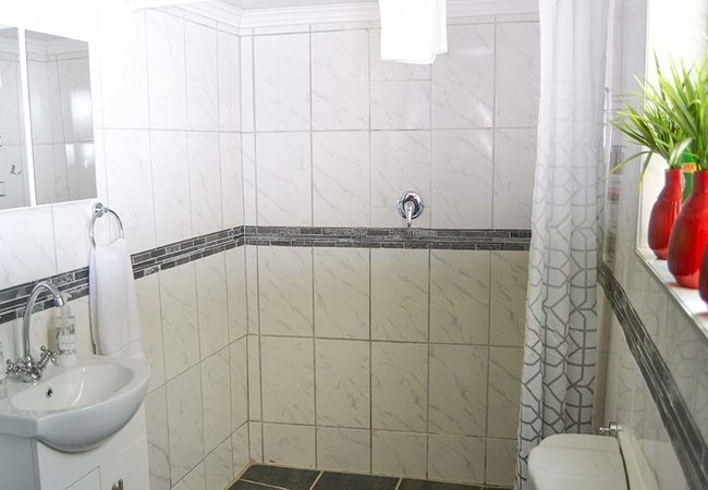 Cellar Bathroom