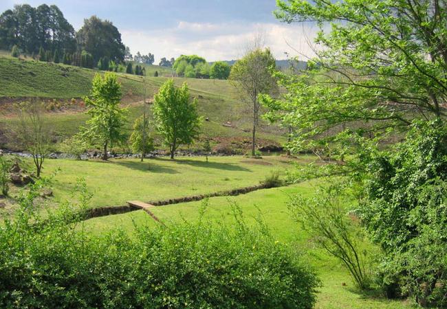 KZN Midlands scenery