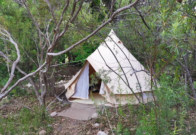 Cederkloof Forest Camp