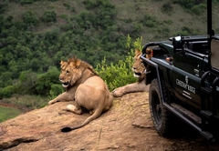 Cheetah Ridge Lodge