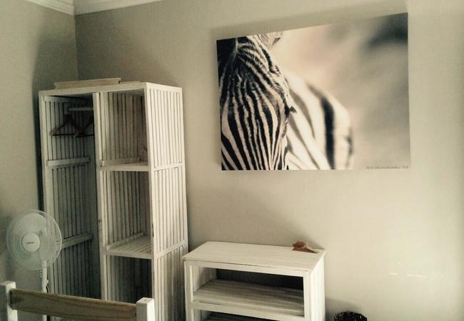 Luna Unit 3 - Zebra