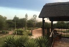 Chinaka Lodge - Modjaji