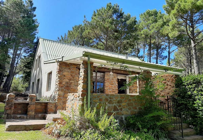Cool Coral Tree Cottage