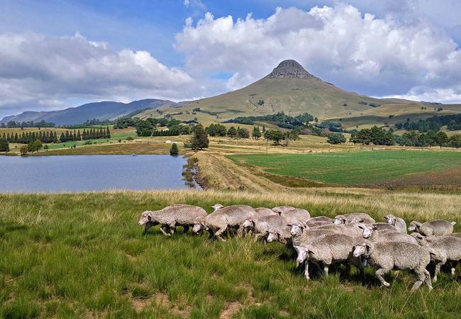 Cabin lounge/kitchen